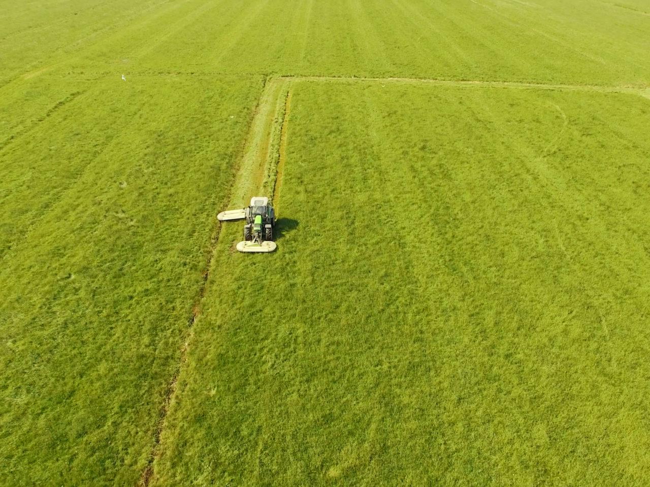 Luftbild Traktor von Speers Hoff fährt auf Grünflächen zur Futterversorgung von Kleintieren und Nagern