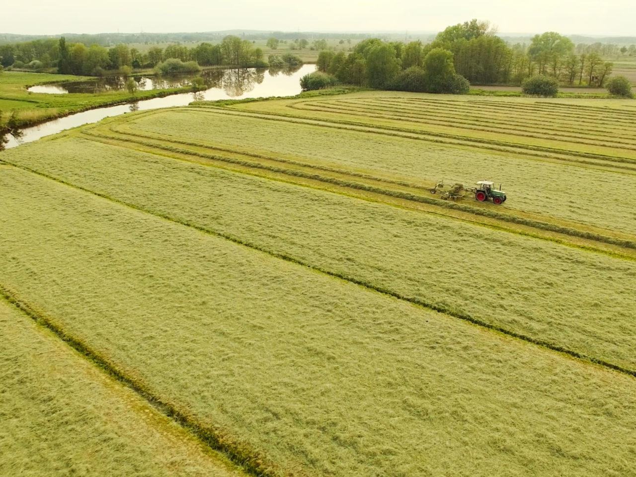 Luftbild Traktor von Speers Hoff erntet die eigenen Gräser der saftigen Marschwiesen hinterm Elbdeich von Speers Hoff