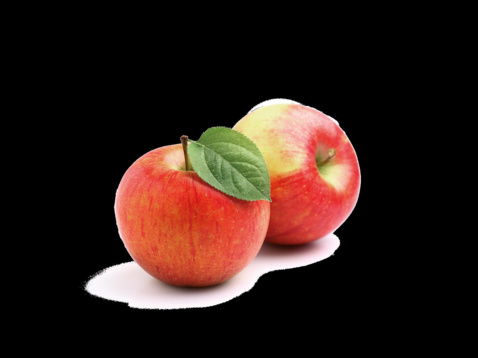 Wiesenblumen aus dem Produkt Snacks Apfelchips für Nager von Speers Hoff